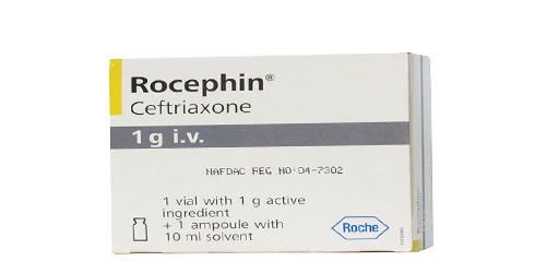 Rocephin (Ceftriaxone)1di